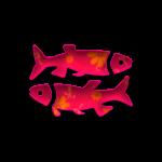 horoskop-ribi